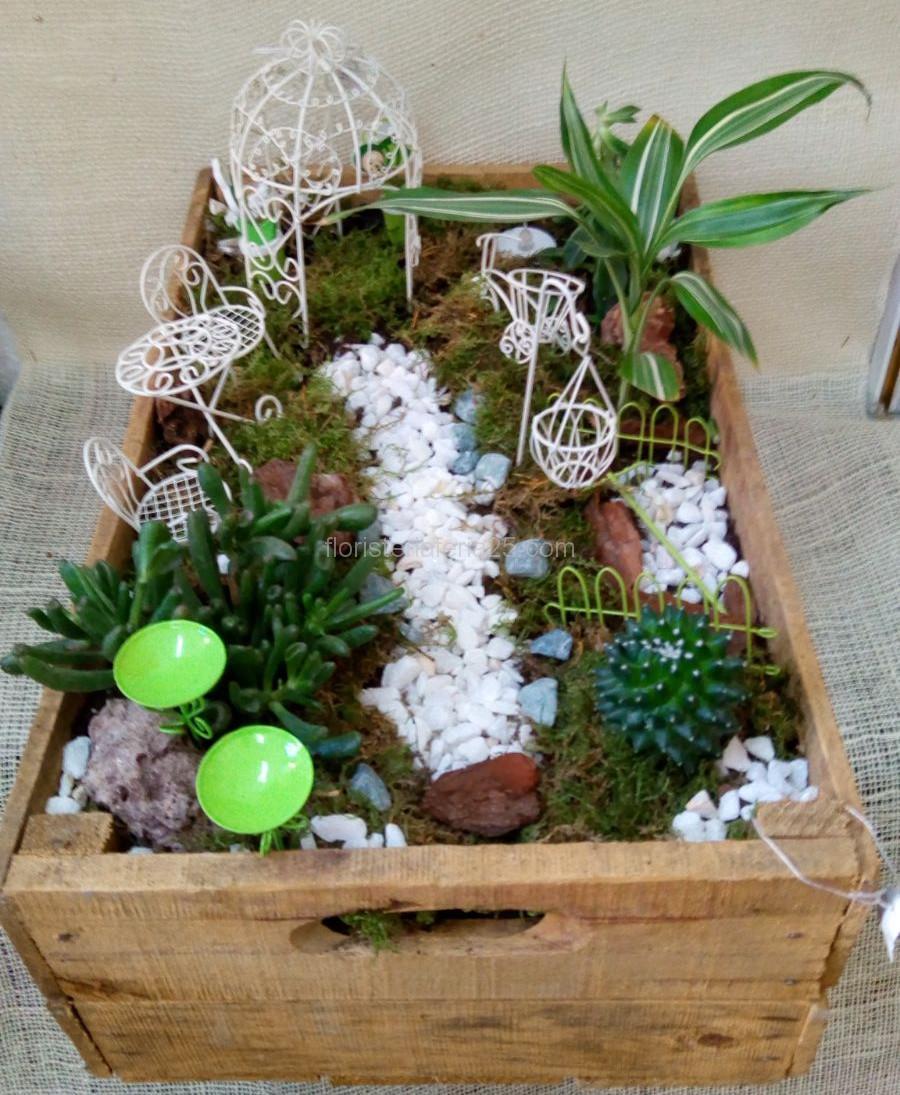 Terrario en caja de madera florister a feria 25 - Como construir un terrario ...